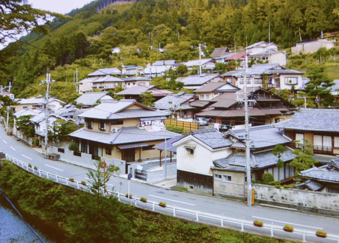 image_Kitayamasugi1030_11