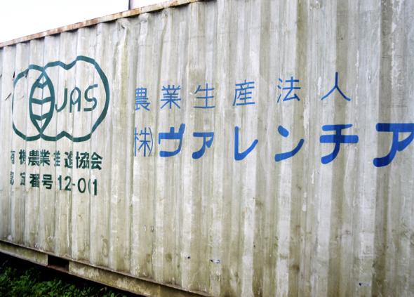 image_platinukasama1009-16.jpeg